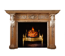 Fireplaces and Surrounds